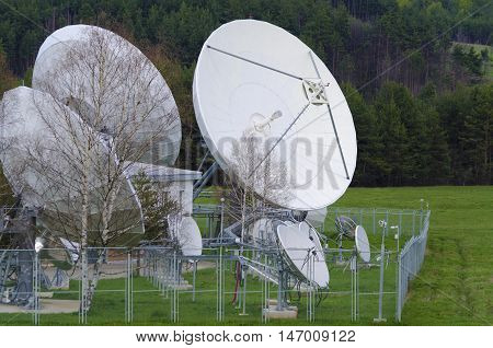Satellite dishes and birches in a ground station