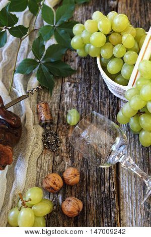 Bunch of fresh green grapes, walnuts and wineglass
