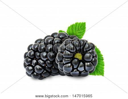 Two fresh ripe blackberry berries with leaves isolated on white background. Design element for product label, catalog print, web use.