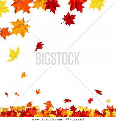 Autumn copy-space frame with maple leaves. Vector illustration.
