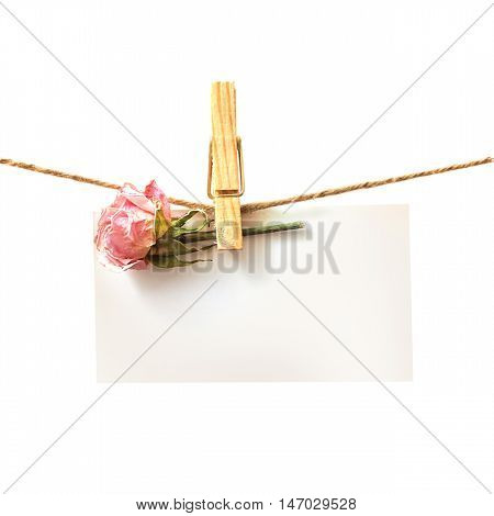 Flower and white card with clothes peg isolated