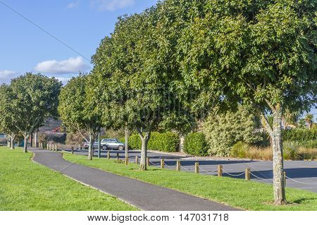 auckland park, new zealand
