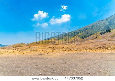 Savanna valley of Tengger caldera near Bromo volcano at Java island in Indonesia.