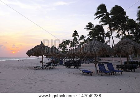 Beach umbrellas and beach chairs on Manchebo beach on Aruba island at sunset