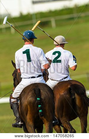 Polo players riders horse ponies equestrian game action.