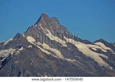 High mountain in the Swiss Alps. Mt Finsteraarhorn view from Mt Niederhorn.