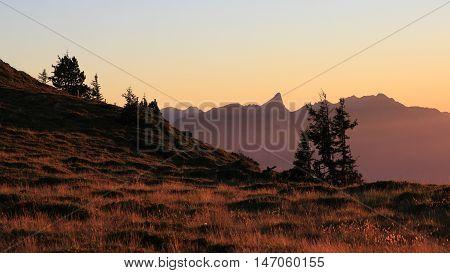 Summer evening on Mt Niederhorn Swiss Alps. Silhouette of Mt Stockhorn.