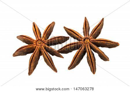 star anise  badian on a white background