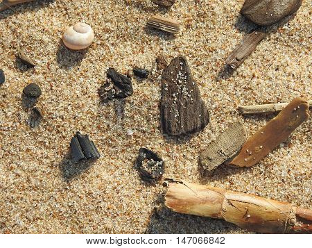 Abstract texture in cold colors of sand and small beach elements