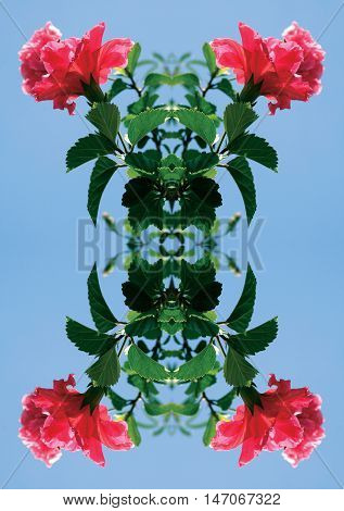 A shot of a pink flower with green leaves and a blue sky in a mirror image pattern