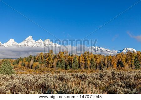a scenic fall landscape with the snow capped tetons in Wyoming