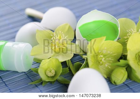 Green tempera paint tube and hellebore and egg shells in a Easter decoration