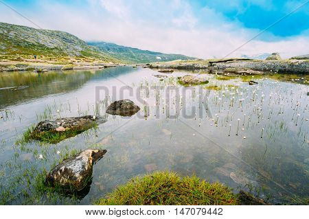 Norwegian Landscape With Mountains Lake And Cotton Grass, Cotton-grass Or Cottonsedge Eriophorum On Foreground. Nature Of Norway. Travel And Hiking Concept.