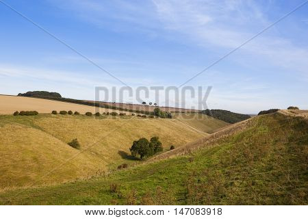 Valley In Late Summer