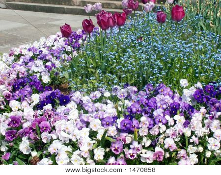 Cama de jardín de primavera alegre