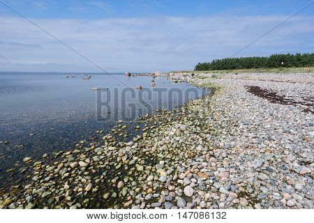 Rocky beach in summer. Seaside natural environment. White clouds blue sky and sea coast forest in background. Shore in Koipsi Island Estonia Europe