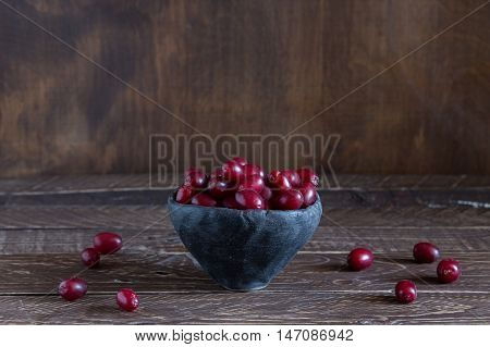 dogwood berries in a clay bowl dogwood berries on brown background red dogwood berries .