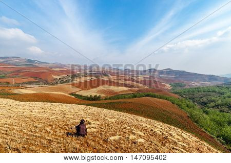 A female farmer is taking a break at a wheat field at the