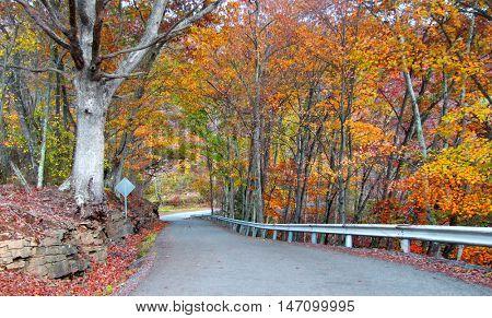 Scenic autumn drive in West Virginia Appalachian mountains
