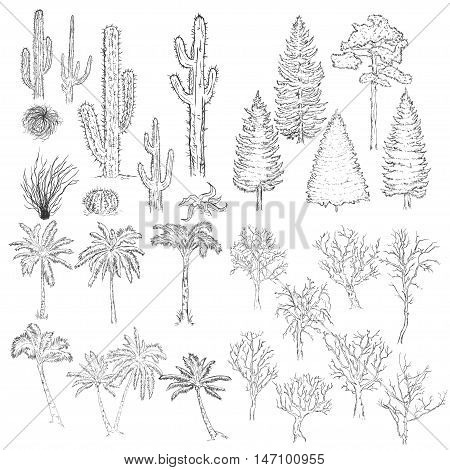 Vector Big Set Of Sketch Trees And Plants.