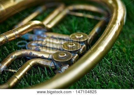 Part of a brass musical instrument French horn on a lawn