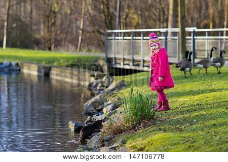 Little girl feeding otter ducks and geese in park river on cold autumn day. Kids taking care of animals. Outdoor fun for children in fall or winter. Family day trip to the zoo.