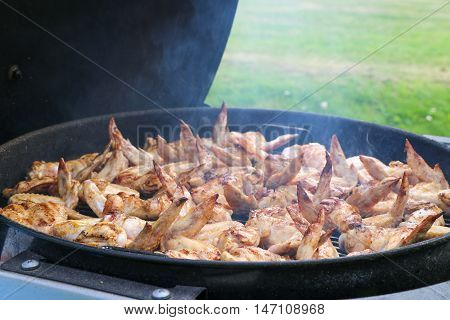 Chicken wings on barbecue grill. Grilled chicken.