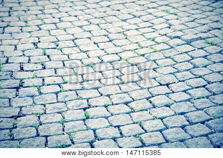 Background of old cobblestone pavement. Growth of a grass from joints.