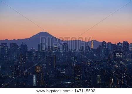 Tokyo city view with Mount Fuji and Tokyo tower landmark
