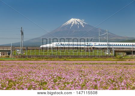 Shizuoka - MAY 05 : Shinkansen bullet train and Mountain Fuji on May 05 , 2016 , Shizuoka ,Japan. Shinkansen is world's busiest high-speed railway operated by four Japan Railways companies.