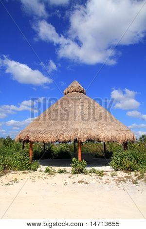 Big Palapa Hut Sunroof In Mexico Jungle