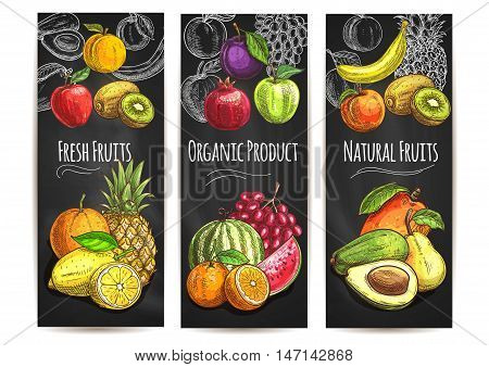 Fresh natural organic fruits. Vector sketch color icons of pear, orange, avocado, apple, peach, banana, kiwi, lemon, mango, pineapple, watermelon pomegranate grape plum for juice drink label poster
