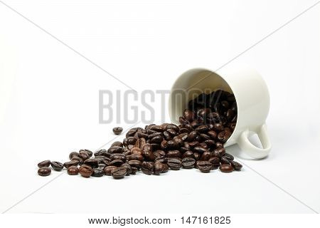 Coffee bean whole in cup on white background