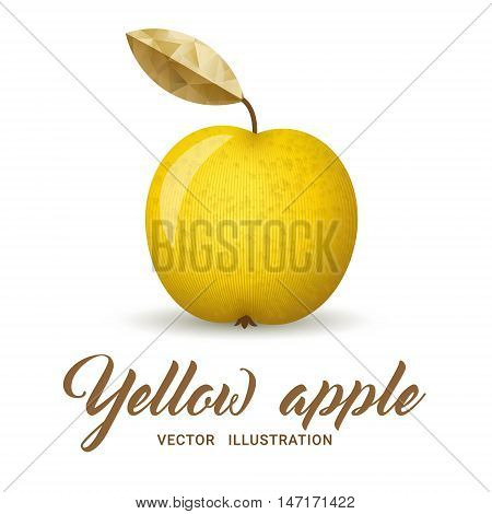 Realistic yellow apple isolated on white - vector illustration. Big yellow apple with bright golden leaf.