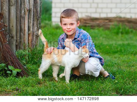 Red Cat Tenderly Rubs Against The Hand Of A Little Boy