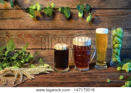 beer types assortment on wooden table in bar or pub decorated on wooden background