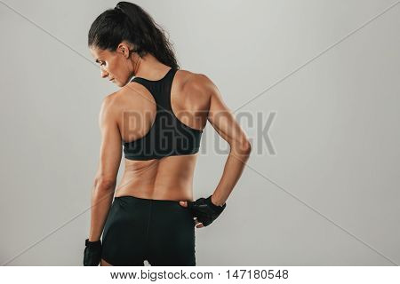 Back Side View Of Woman With Pony Tail