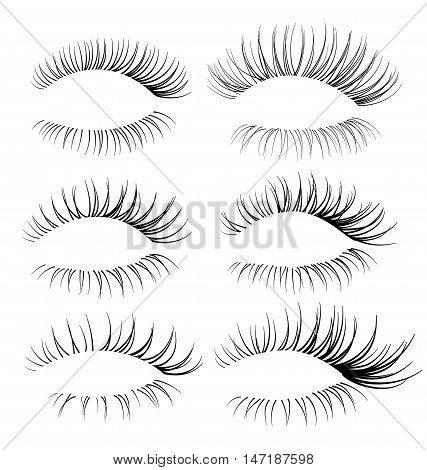 Vector realistic eyelash textures. Beautiful eyelash brushes