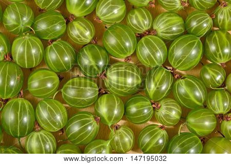 Fresh Green Gooseberry Close Up As Background