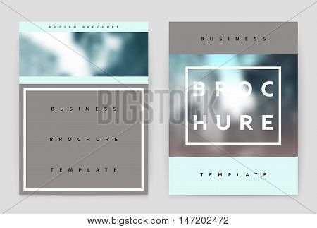 Layout design template, annual report brochure. Business flyer design template.