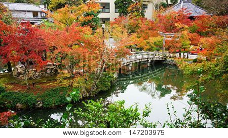 Fall Color And Bridge In Eikando Temple, Kyoto