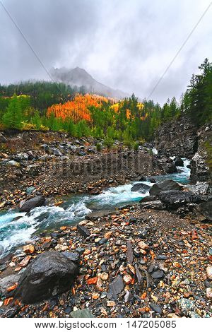Autumn landscape with mountains and mountain river (Altai Russia).