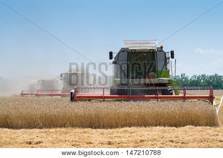 KRASNODAR REGION, RUSSIA - JUL 7, 2015: Modern harvesters harvest yellow wheat field, In 2015 in Krasnodar region have collected record grain harvest - 102 million tons of grain