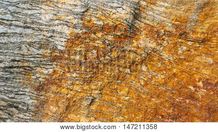 Gneiss Layered Texture. The layers and texture of this natural, Granite Gneiss make an edgy, yet earthy background for any project.