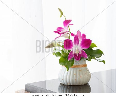 Boquet of orchid flowers and green leaf against a white wall white blinds background.