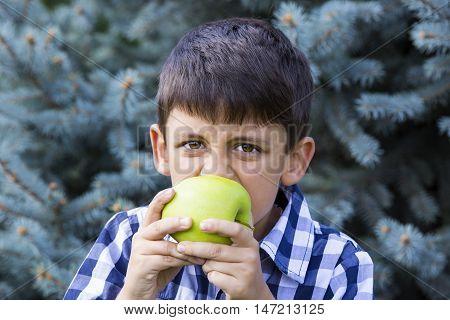 boy eating large juicy green apple Fruit