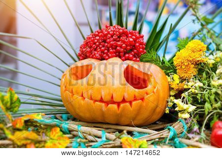 Pumpkins carved in form of fun and scary faces. Harvest prepare for Halloween. Large orange autumn pumpkin and zucchini