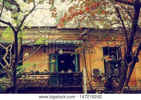Old building and Indian almond tree in Hanoi