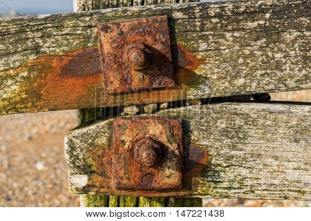 Detail of a groyne at Pevensey East Sussex UK