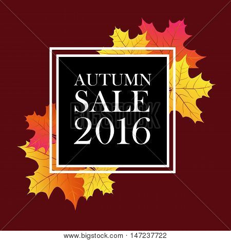 Autumn sale 2016 lettering. Black square with white autumn sale inscription isolated on brown background with maple leaves. Can be used for postcard, flier, banner